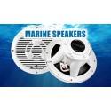 Audiopipe Parlantes(Speakers)